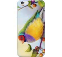 Gouldian finch realistic painting iPhone Case/Skin