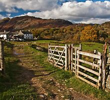 Autumn on a Cumbrian farm by Shaun Whiteman