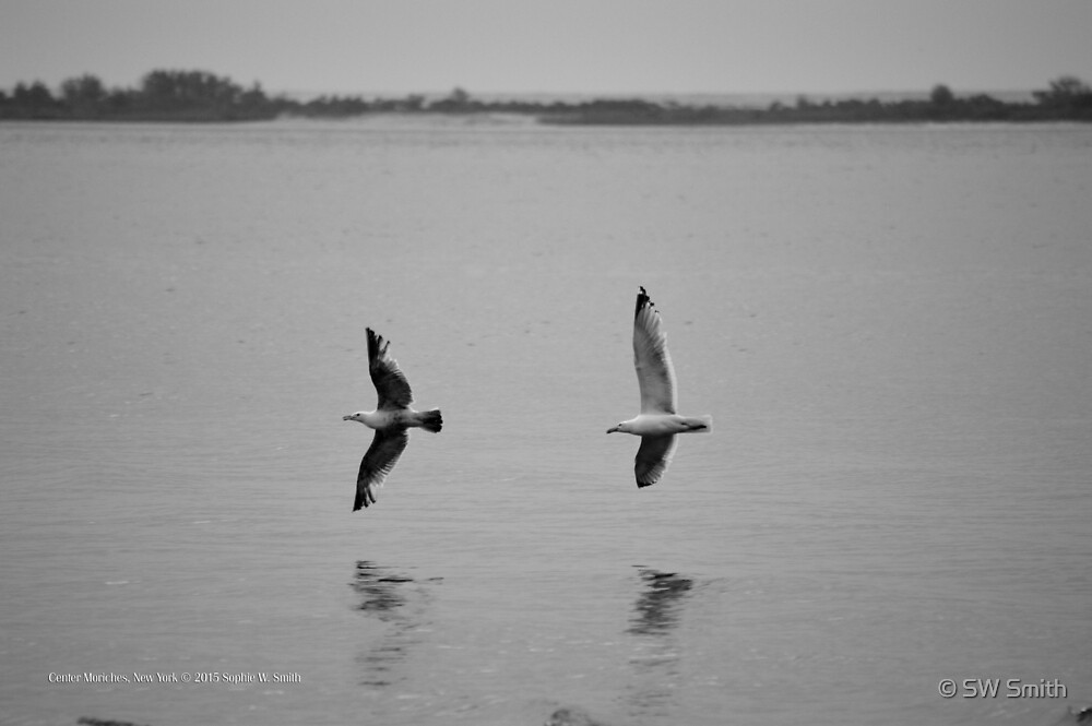 Two Seagulls - Happiness | Center Moriches, New York  by © Sophie W. Smith