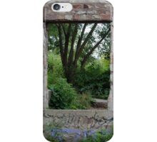 Paneless iPhone Case/Skin