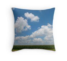 Iowa Plains Throw Pillow