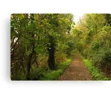 Wooded Area Above Lyme Bay Canvas Print