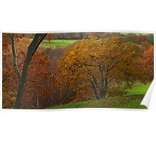 Adel Wood Autumn Poster