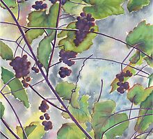 Russian Grapes by Marsha Elliott