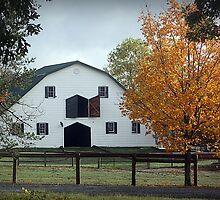 The Barn by rasnidreamer