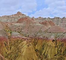 Badlands NP / Seabed Jungle by Mark Bolen