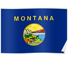 State Flags of the United States of America -  Montana Poster