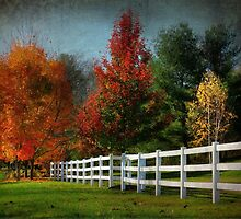 Autumn in the Valley by Lori Deiter
