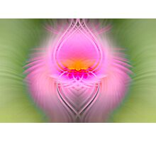 Abstract Pink and Green Photographic Print