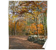 Around the Bend in Autumn Poster