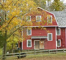 War Eagle Grist Mill side view, N.W. Arkansas by David  Hughes