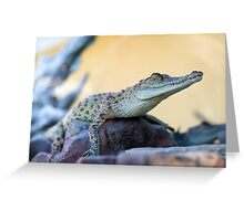 Croc profile - crocodile at Croccosaurus center Darwin Greeting Card