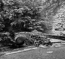 Stony Creek Bridge by Linda Houghton