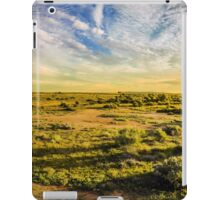 Sun Drenched iPad Case/Skin