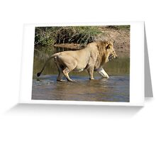 Majingilane Male Crossing River Greeting Card