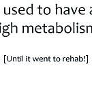 High Metabolism by Ryan Houston