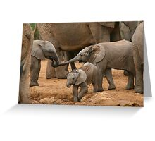 Pachyderm Pals Greeting Card