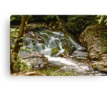 Little Falls HDR Canvas Print