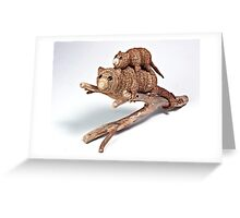 Possums Greeting Card