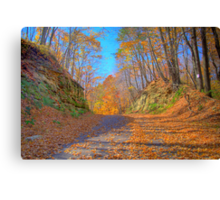 A Fall Drive Canvas Print