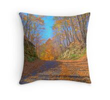 A Fall Drive Throw Pillow