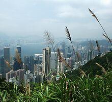 Hong Kong Landscape by Joanne Emery
