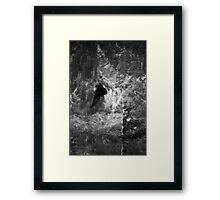 Freedom Flight Framed Print