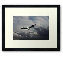 Ruler of the Skies Framed Print