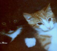 MARIAH AND SCORPIO..wanna laugh look at the video by Sherri     Nicholas