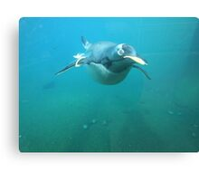 Well, hello there..... Canvas Print