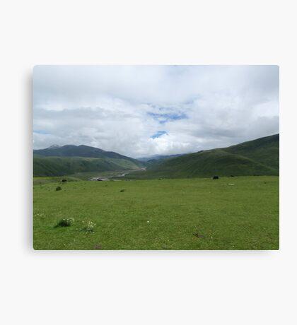 The Green Hills Canvas Print