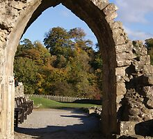 bolton abbey 2 by rebecca metcalf