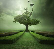 Oak by Alshain