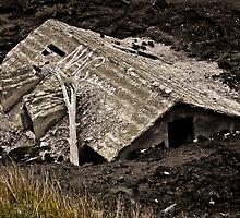 Etna Lava flow I - The Prisoner by Saka