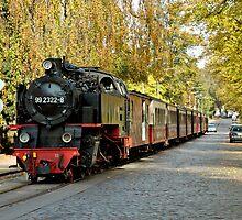 "MVP81 The ""Molli"" steam train in Bad Doberan, Germany. by David A. L. Davies"