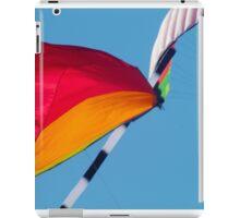 Kite iPad Case/Skin