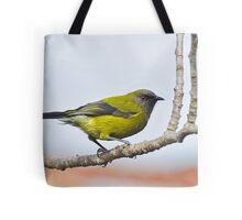 A Belbird. Gore, South Island, New Zealand. Tote Bag