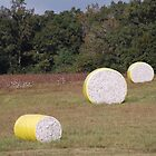 Cotton Bales by zpawpaw