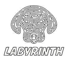 Labyrinth by Ruben Wills