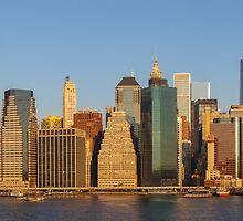 Manhattan panorama by Mikhail Palinchak