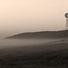 Misty prairie morning by Michael Collier