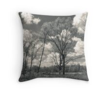 Prairie In May Throw Pillow