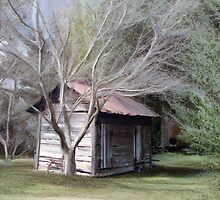 Old Shed in Color by suzannem73