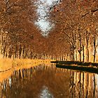 Autumn reflections Canal du Midi Capestang France by Paul Pasco