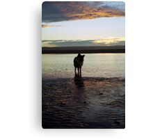 Indy's Sunset Canvas Print