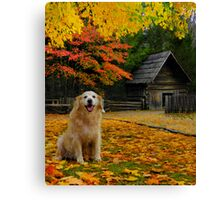 Autumn Twink Canvas Print