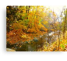 Only the sound of trickling waters Canvas Print