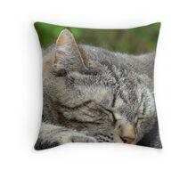 Sleeping Tigress Throw Pillow
