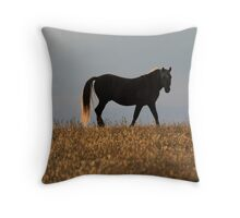 Field and Horse of Gold Throw Pillow