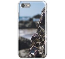 Oyster Rocks  iPhone Case/Skin